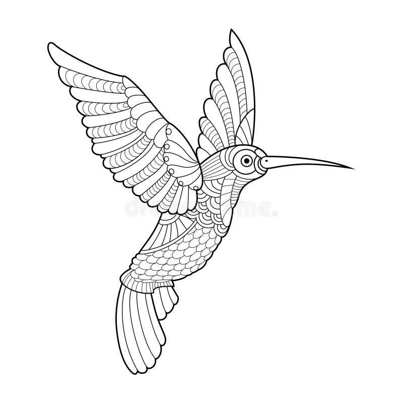 Kolibrifärgläggningbok för vuxen människavektor vektor illustrationer