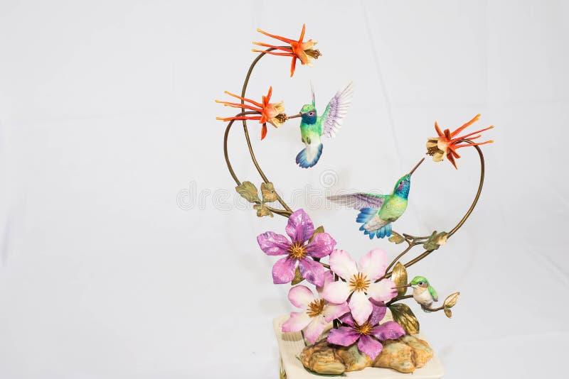 Kolibris auf Ausstellungsstand stockfotos