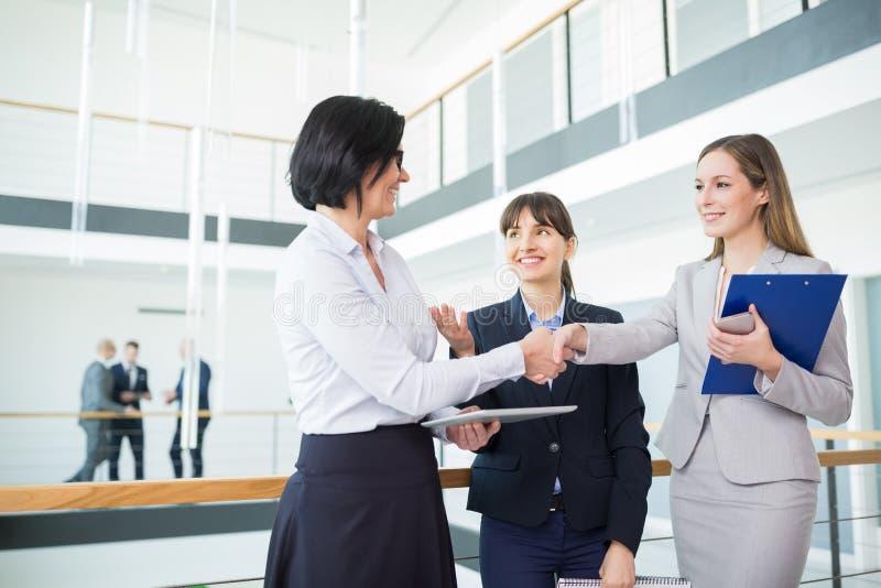 Kollegor som skakar händer, medan stå i regeringsställning arkivbild