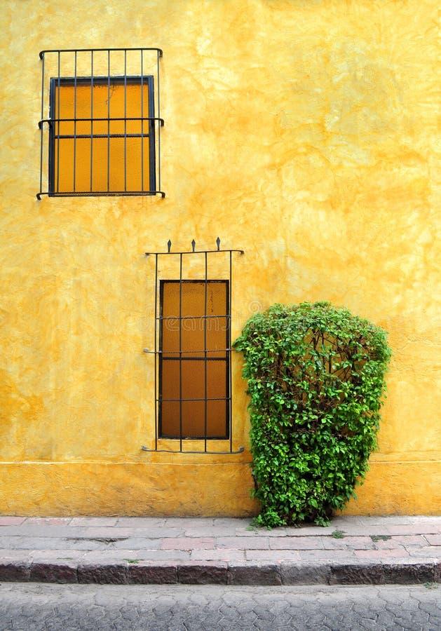 Koloniaal huis met vensters, kleurrijke muur en een struik royalty-vrije illustratie