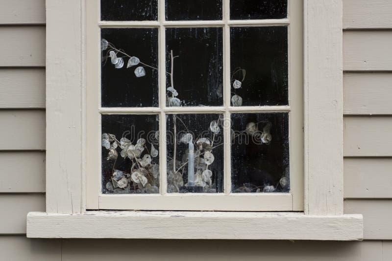 Kolonialt husfönster med stillebenväxten royaltyfria bilder