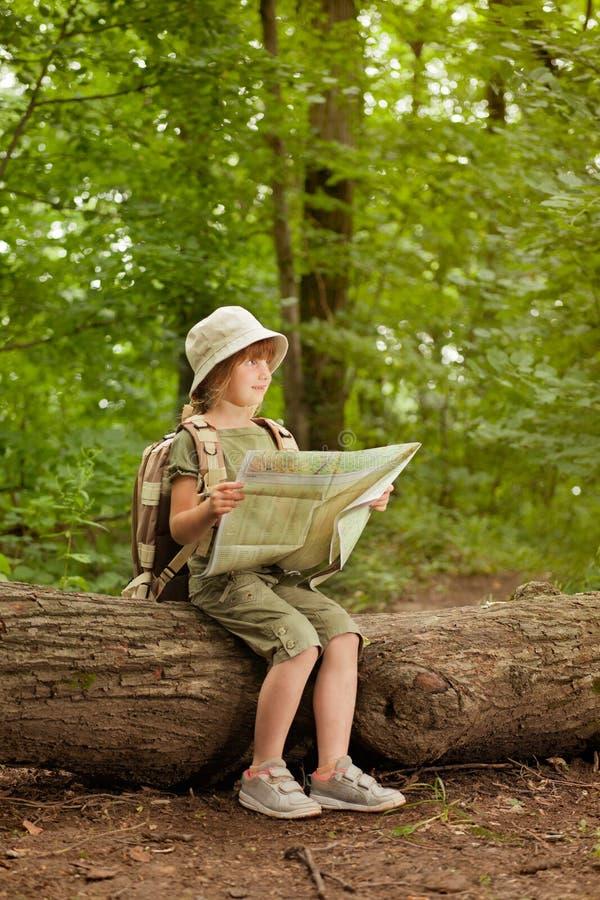 Kolonier spanar barnet lästa översikten i skog royaltyfria foton