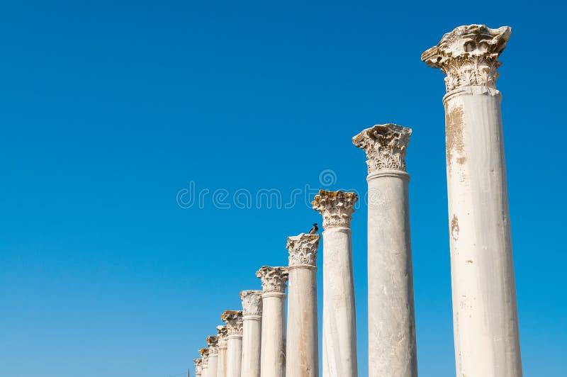 Kolonnaden i det forntida fördärvar av salamistad cyprus arkivfoton