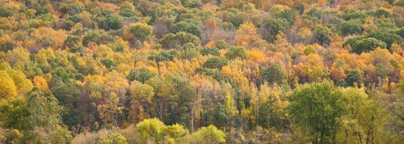 kolorów Connecticut spadek zdjęcie stock