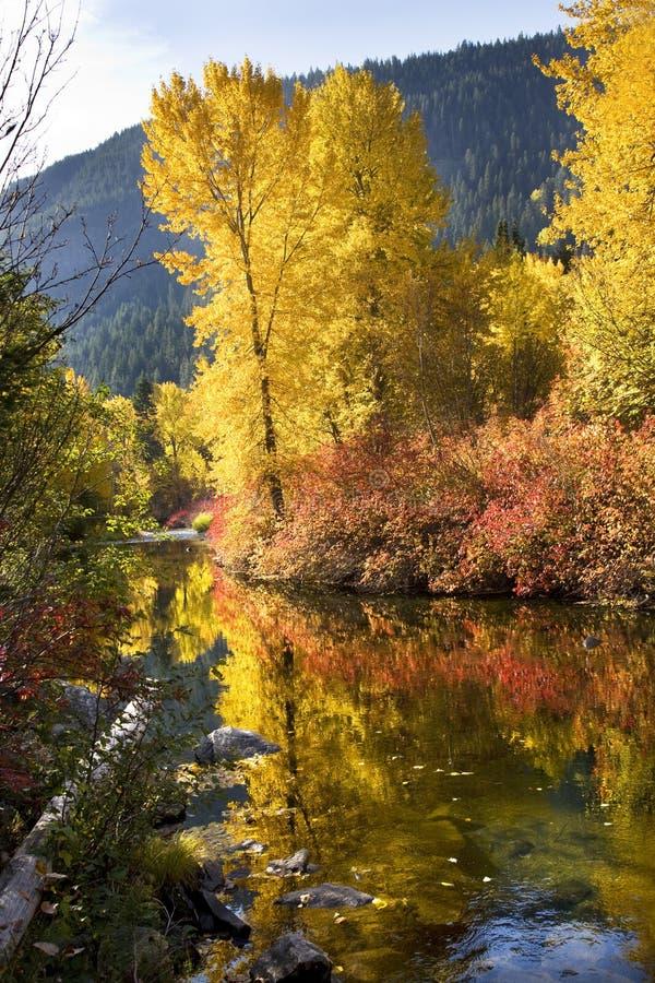 kolorów spadek rzeczny washin wenatchee zdjęcie royalty free