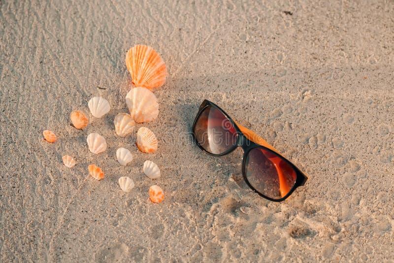 kolor Łuska na piaskowatej plaży z żółtymi okularami przeciwsłonecznymi obraz royalty free