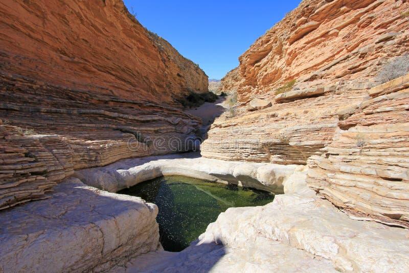Kolor żółty i czerwienie machać skał warstwy, Duży chyłu park narodowy, usa zdjęcia stock