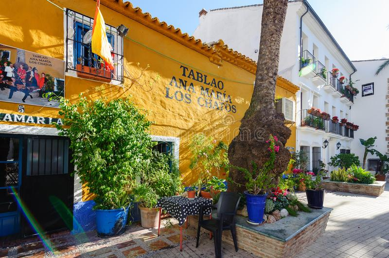 Kolor i jaskrawy jard z pięknymi domami obrazy royalty free