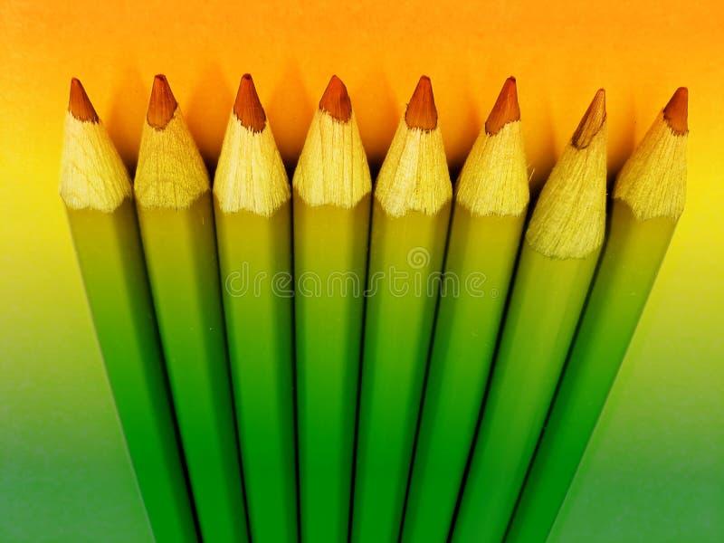 kolor kredki. ilustracji