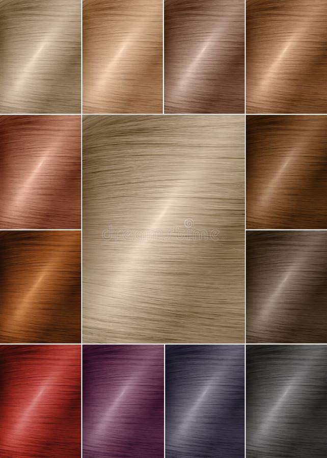 Kolor mapa dla odcieni Włosiana kolor paleta z szerokim zakresem swatches Farbować włosiane kolor próbki układali na karcie w sta obraz stock
