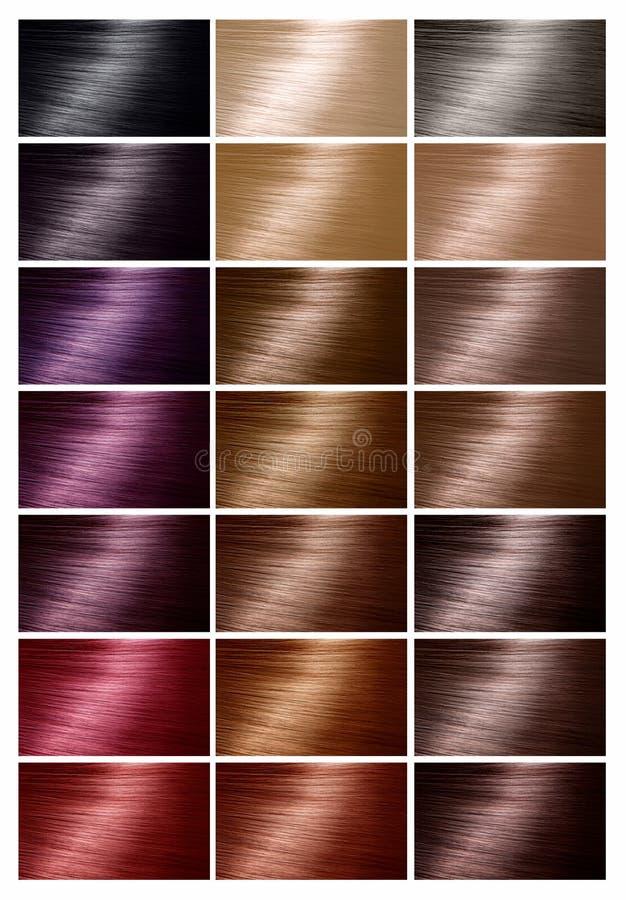 Kolor mapa dla włosianego barwidła odcienie Włosiana kolor paleta z pasmem zdjęcie royalty free