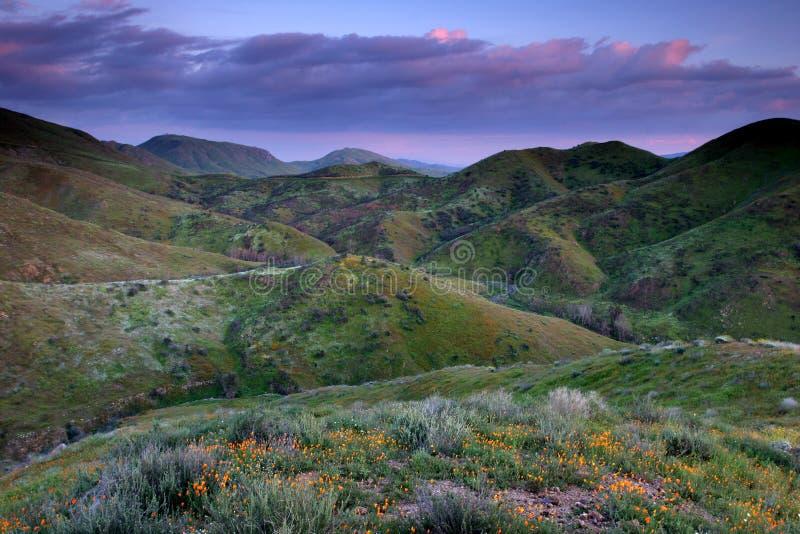 kolor wzgórza zdjęcia stock