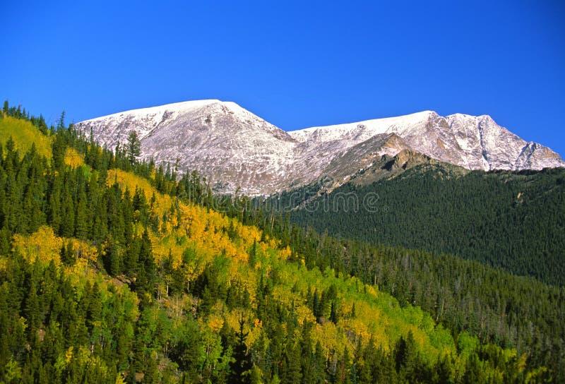 Kolorado-Berge im Fall lizenzfreie stockfotografie