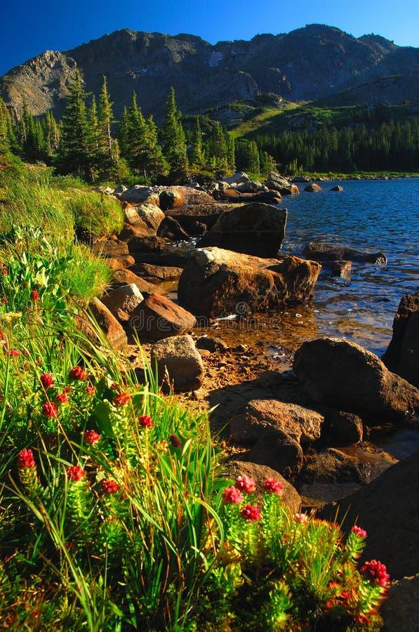 Kolorado-hohes Land lizenzfreie stockfotos