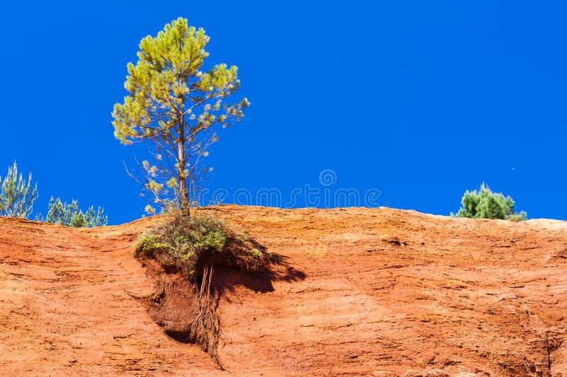 Kolorado provencal stockbild