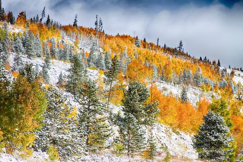 Kolorado Skalistej góry jesieni Śnieżni kolory fotografia stock