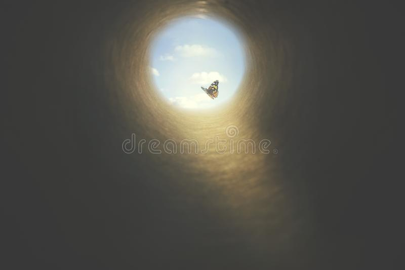 Kolorierter Schmetterling findet seinen Weg aus einem dunklen Tunnel, dem Konzept der Freiheit stockbild