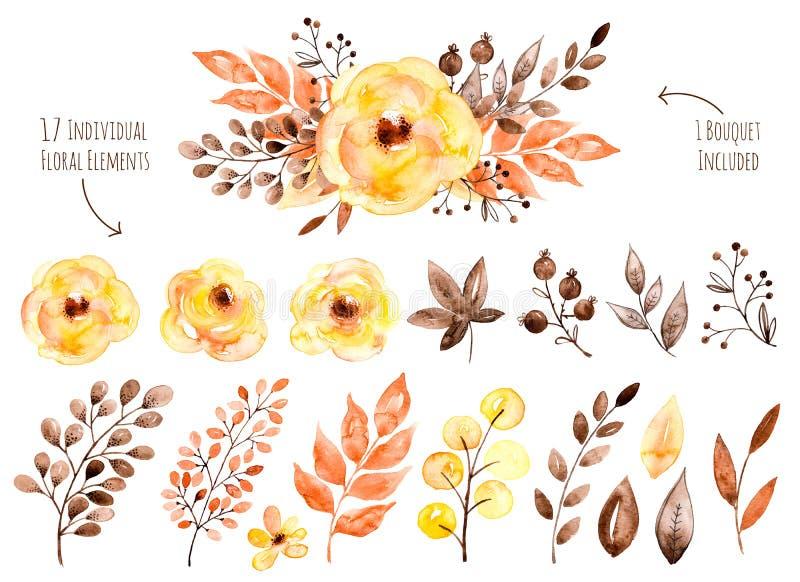 Kolorowa żółta kwiecista kolekcja z liśćmi i kwiatami, rysunkowa akwarela ilustracja wektor