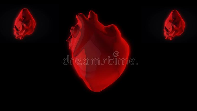 Kolorowa abstrakcjonistyczna animacja 3 czerwonego serca 3d modeluje wirowa? na ciemnym tle animacja Anatomia istota ludzka royalty ilustracja