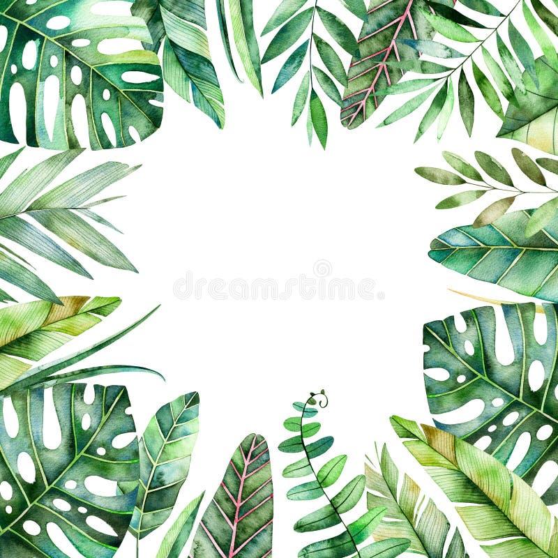 Kolorowa akwareli ramy granica z kolorowymi tropikalnymi liśćmi ilustracja wektor