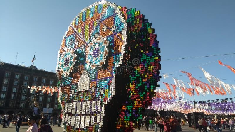 kolorowa czaszka obraz royalty free