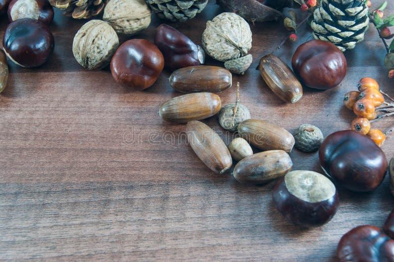 Kolorowa jesień z liśćmi, sosnowi rożki, kasztany, dokrętka zdjęcie royalty free