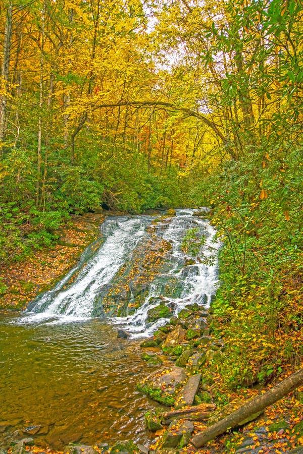 Kolorowa kaskada w spadku lesie zdjęcie royalty free