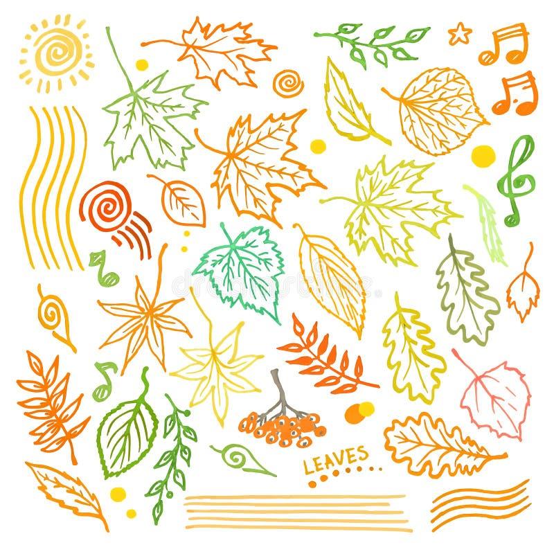 Kolorowa kwiecista kolekcja z liśćmi i dekoracyjnymi elementami, jesień liścia ręka rysująca wektorowa ilustracja royalty ilustracja