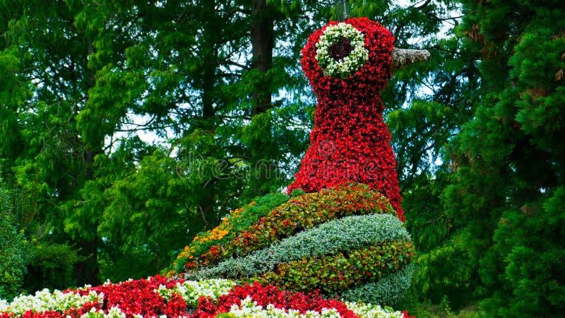 Kolorowa kwiecista postać ptasi ` s ogień na wyspie Mainau obraz royalty free