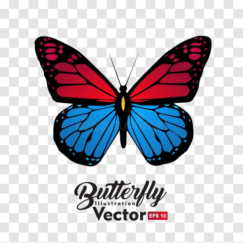 Kolorowa Motylia ilustracyjna wektorowa kolekcja ilustracja wektor