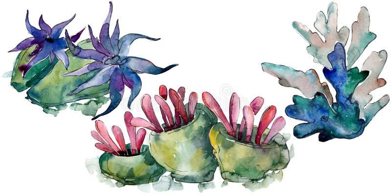 Kolorowa nadwodna podwodna natury rafa koralowa t?a bazy projekta ustalona akwarela Odosobniony koralowy ilustracyjny element royalty ilustracja