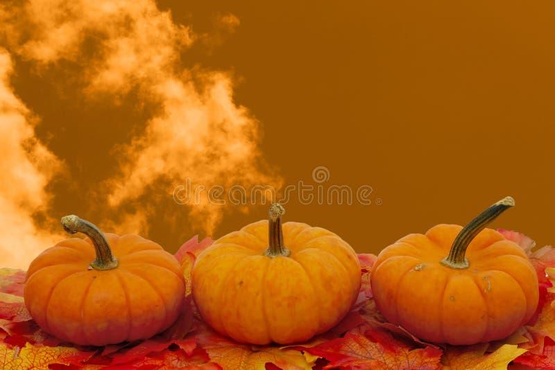 Kolorowa spadek granica w pomarańcze zdjęcie royalty free