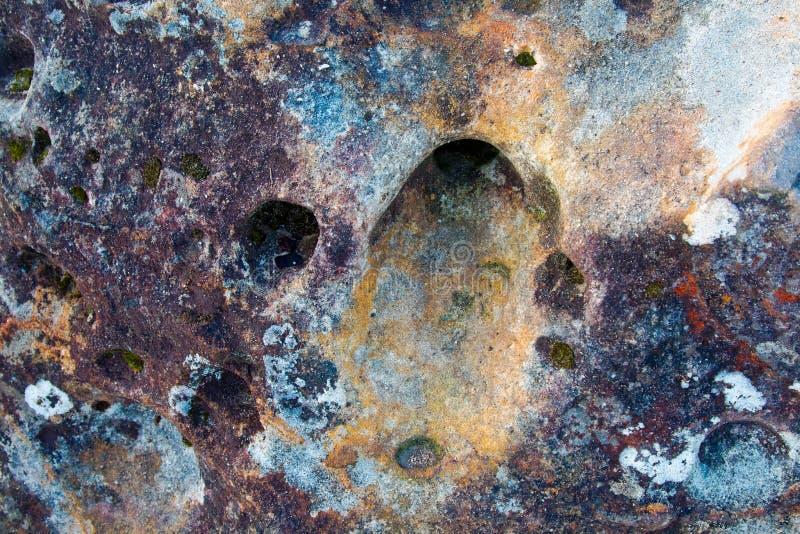 Kolorowa strzępiasta skała z dziurami, mech, liszaju tło fotografia royalty free