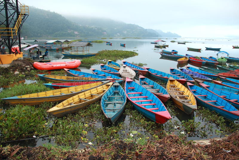 Kolorowe łodzie na Fewa jeziorze (Nepal). obraz stock