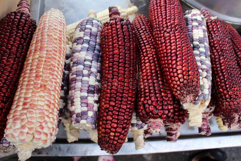 Kolorowe jadalne kukurudze dla sprzedaży przy południowym Thailand obrazy royalty free