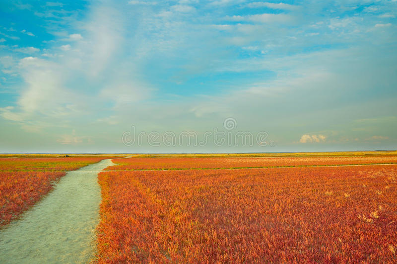 kolorowe krajobrazu zdjęcie royalty free