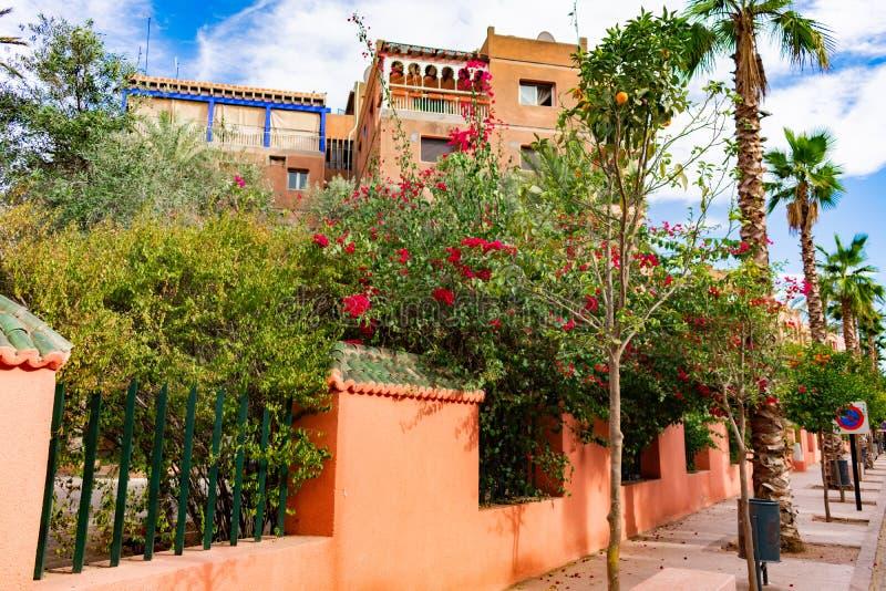 Kolorowe Kwiatonośne rośliny i drzewa z ogrodzeniem wzdłuż chodniczka w Marrakesh Maroko zdjęcia stock