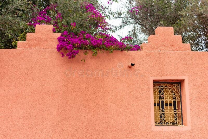 Kolorowe Kwiatonośne rośliny nad Dekoracyjna marokańczyk ściana w Marrakesh Maroko obrazy stock