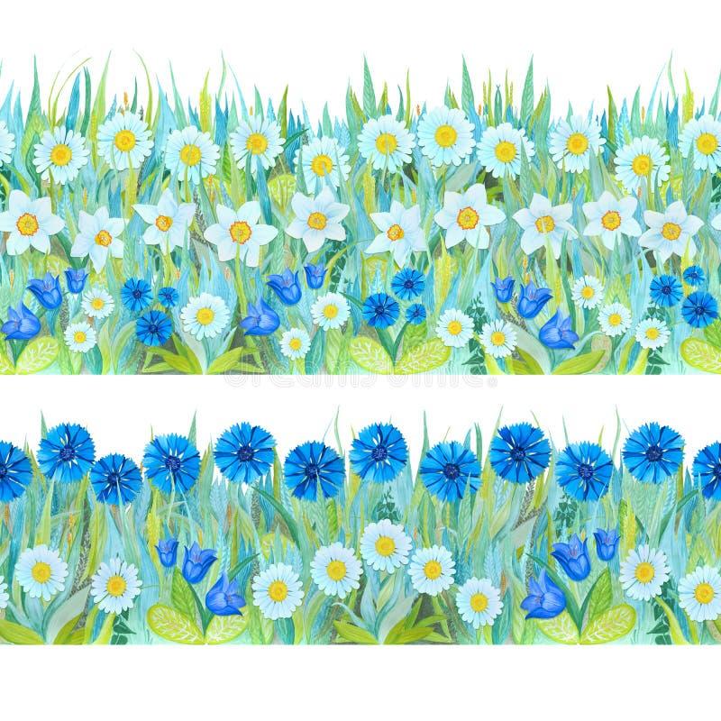 Kolorowe kwieciste bezszwowe granicy Jaskrawy tło - trawy, bielu i błękita kwiaty ilustracja wektor