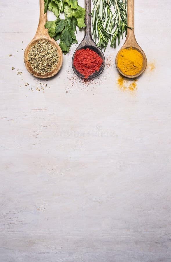 Kolorowe pikantność w drewnianej łyżce z ziele, tandoori, oregano, curry granica, miejsce tekst na drewnianym nieociosanym tło wi zdjęcia royalty free