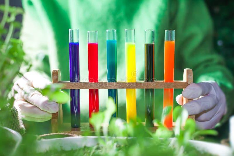 kolorowe próbne tubki podczas doświadczania z roślinami obrazy royalty free