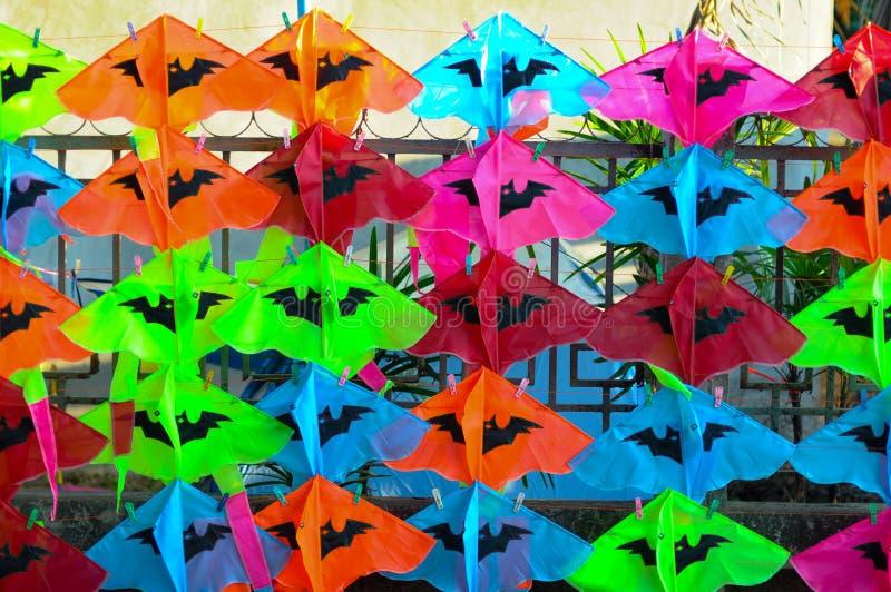 Kolorowe tajlandzkie kanie zdjęcie royalty free
