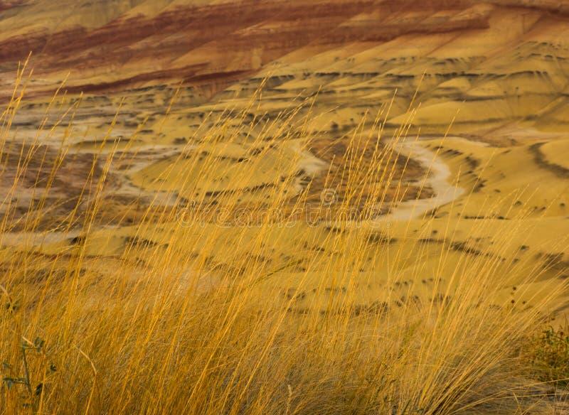 Kolorowe warstwy malująca jesieni trawa i wzgórza obrazy royalty free