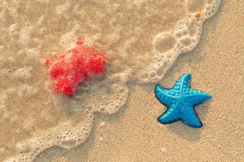 Kolorowe zabawki blisko seashore Czerwony krab i błękitna rozgwiazda myliśmy denną falą zdjęcia royalty free
