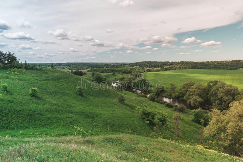 Kolorowego Jaskrawego lata zieleni pola Pogodny krajobraz Z B??kitnym Chmurnym niebem, Rzecznymi drzewami I wzg?rzami, zdjęcia stock
