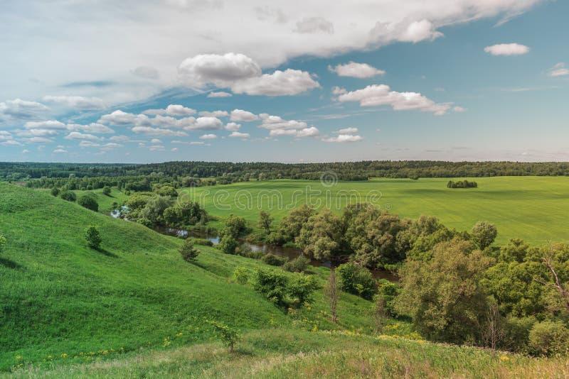 Kolorowego Jaskrawego lata zieleni pola Pogodny krajobraz Z B??kitnym Chmurnym niebem, Rzecznymi drzewami I wzg?rzami, obrazy stock