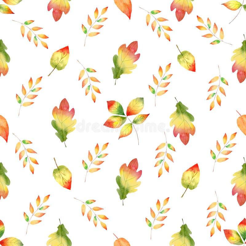 Kolorowego jesieni lasowego ulistnienia akwareli raster bezszwowy wzór obraz royalty free