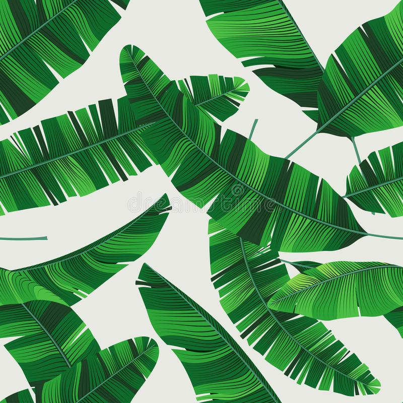 Kolorowego lata bezszwowy tropikalny wzór z bananowymi liśćmi ilustracja wektor