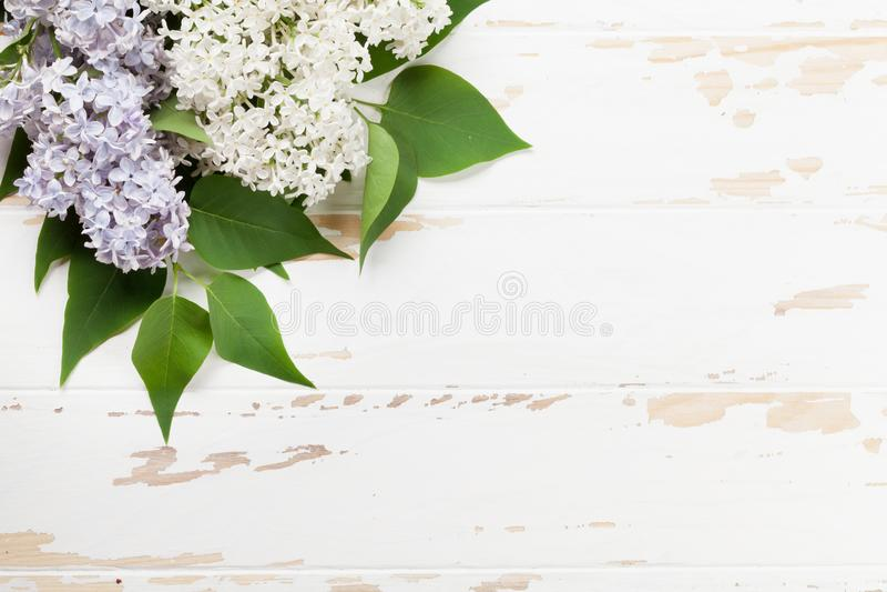 Kolorowi bzów kwiaty fotografia stock