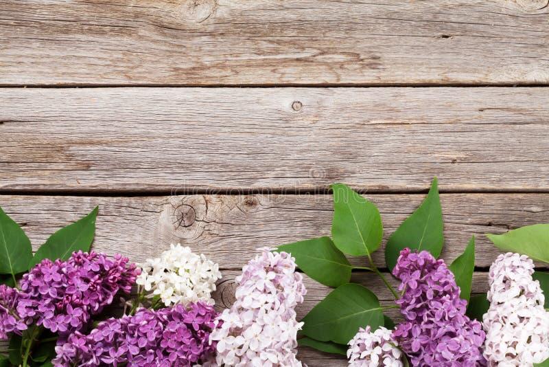 Kolorowi bzów kwiaty obraz royalty free